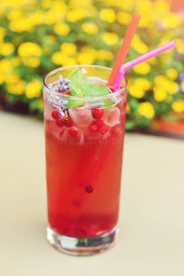 Zimny napój z brusznicą i lawendą na stole, outdoors Lato koktajl brusznica z lodową i świeżą lawendą Czerwony freshment d zdjęcia stock