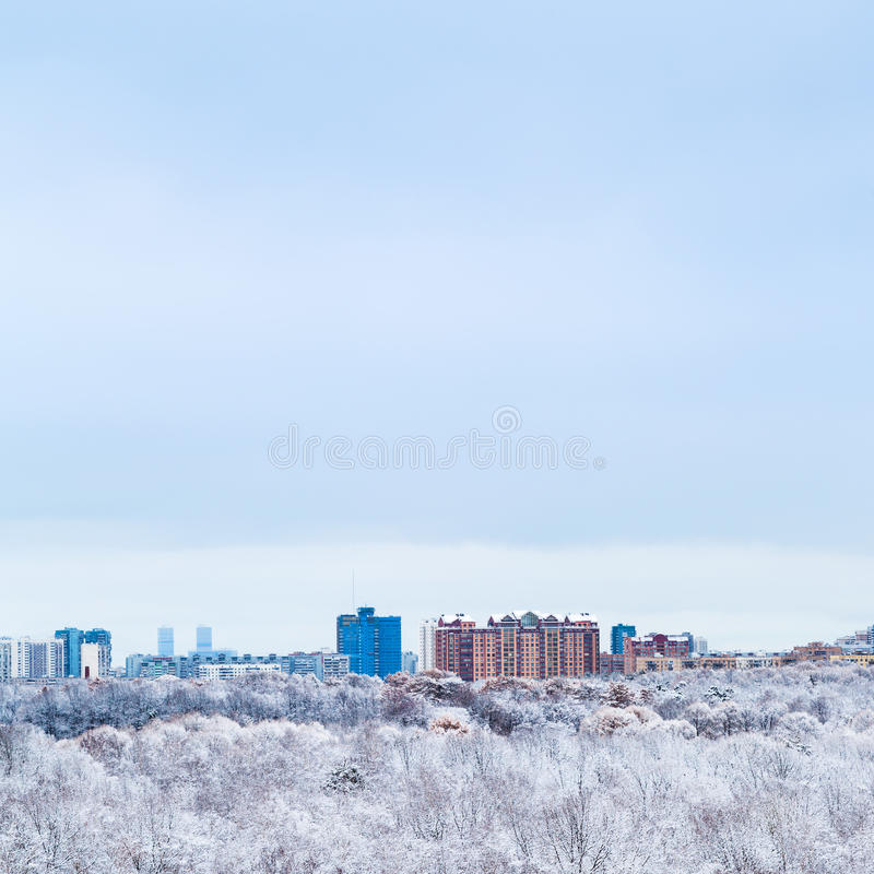 Zimny niebieskie niebo nad grodzkimi i śnieżnymi drewnami w zimie zdjęcie stock