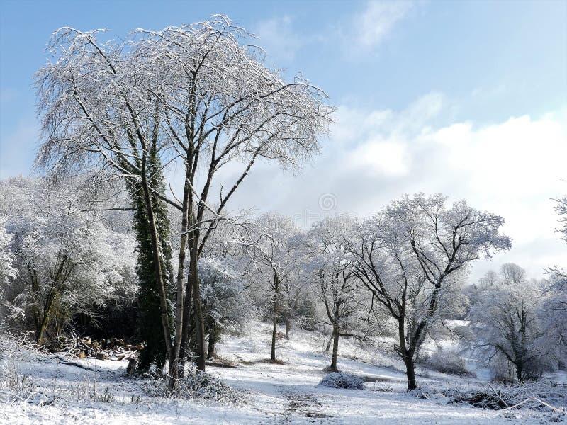Zimy śnieżna scena na Chorleywood błoniu, Hertfordshire, UK zdjęcie stock