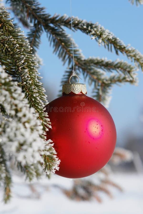 Zimy bauble czerwony zakończenie zdjęcie royalty free