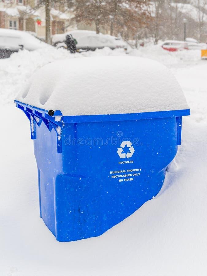Zimy burza w Południowy Nowym - bydło obrazy royalty free