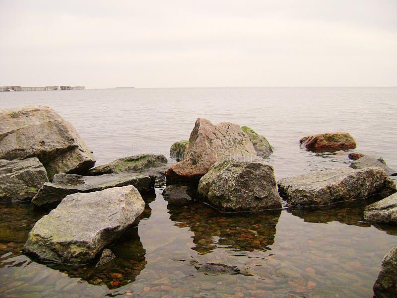 Zimy Czarny morze Gałąź drzewo nad nawadniają czarny morze Linia brzegowa piaskowata plaża na chmurnym dniu fotografia royalty free