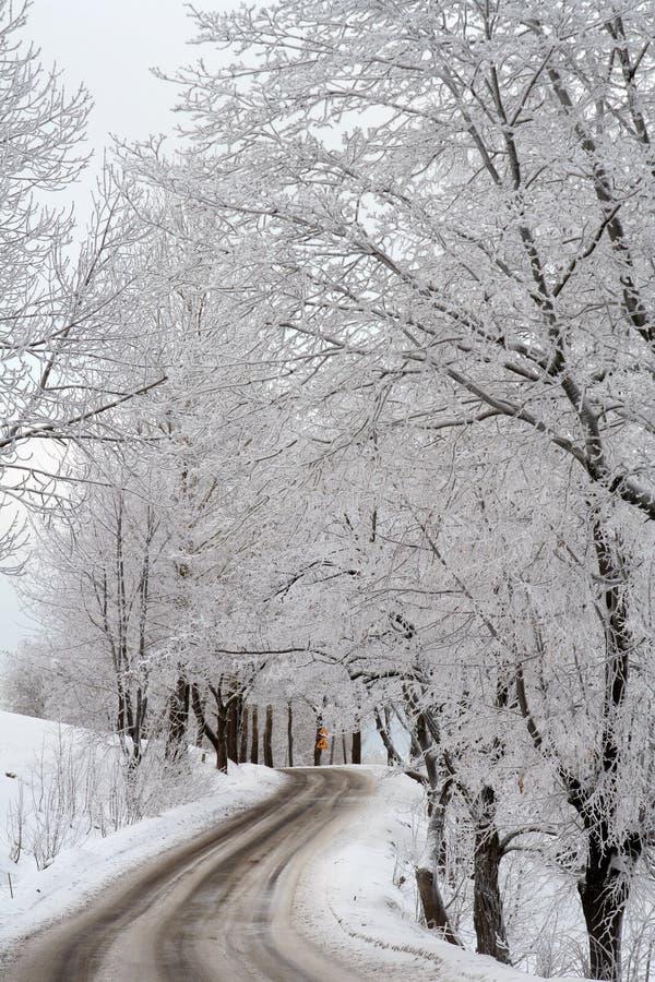 Zimy droga zdjęcie royalty free
