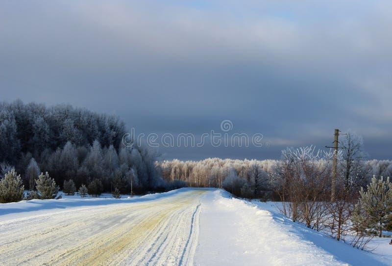 Zimy droga przez lasu fotografia royalty free