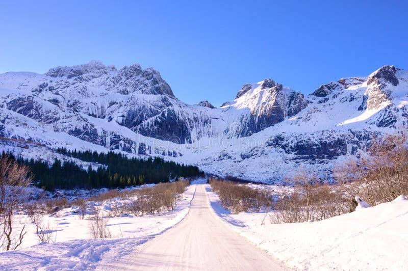Zimy droga w Lofoten, Norwegia krajobraz obrazy royalty free
