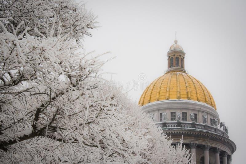 Zimy drzewna pobliska katedra w Petersburg obraz stock