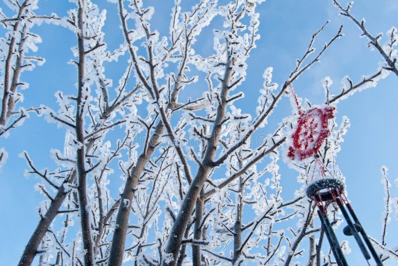 Zimy drzewo przy nieba tłem zdjęcia stock