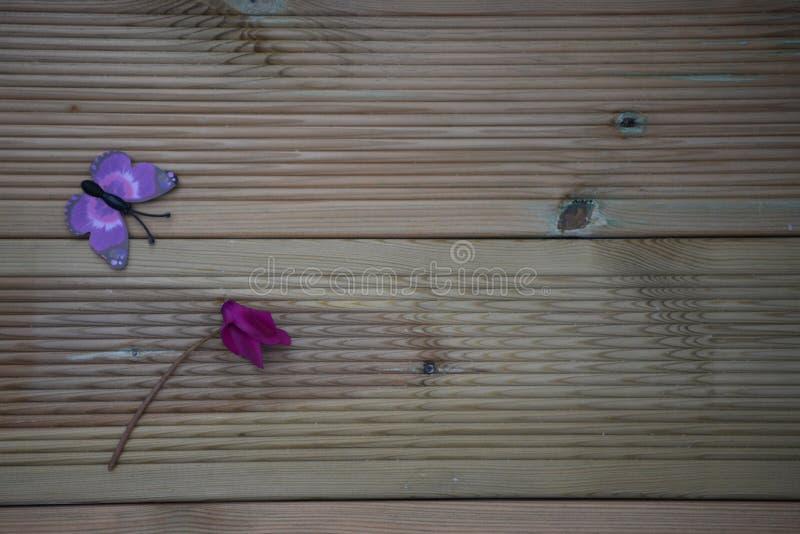 Zimy fotografii wizerunek różowi purpurowi cyklameny i zabawa zabawkarski motyl na kwitnie nieociosanym drewnianym tle i przestrz zdjęcie royalty free