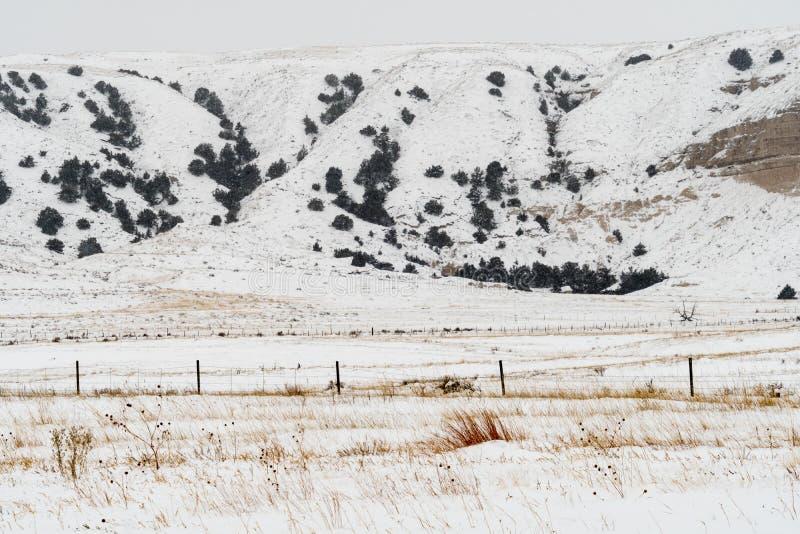 Zimy górkowata krajobrazowa scena w wiejskim Nebraska fotografia stock