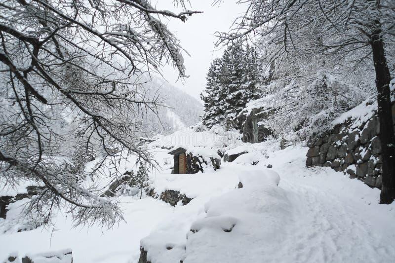Zimy góry krajobraz z starym woodshed niedalekim las droga obrazy royalty free