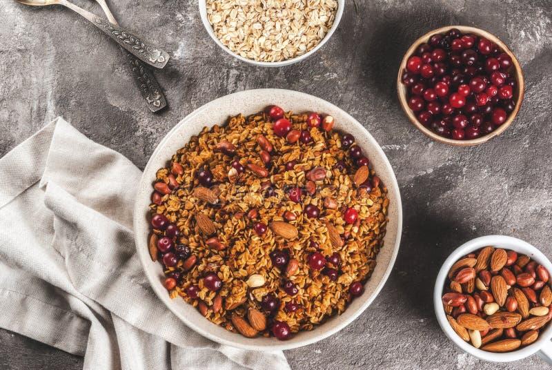 Zimy granola z cranberry obrazy stock