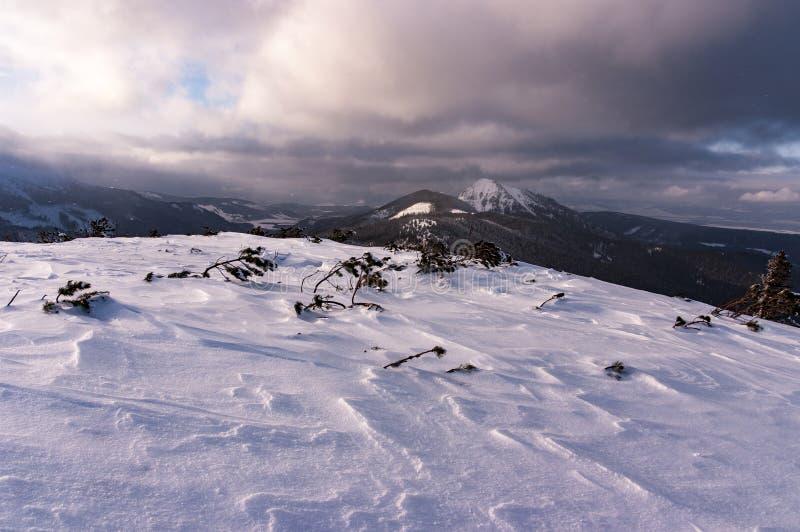 Zimy halna sceneria podczas miecielicy Zachodni Tatrzański Mountai obraz royalty free