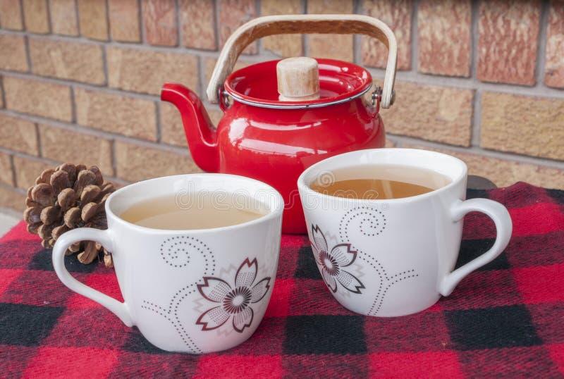 Zimy herbata dla Dwa zdjęcie royalty free