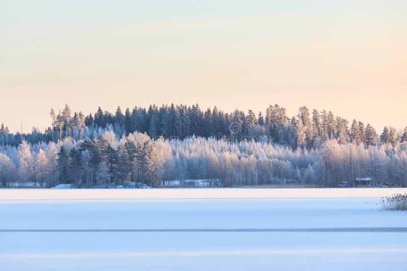Zimy jeziorna sceneria w Finland zdjęcia royalty free