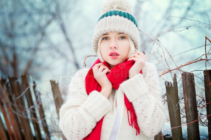 Zimy kobiety portret obraz royalty free