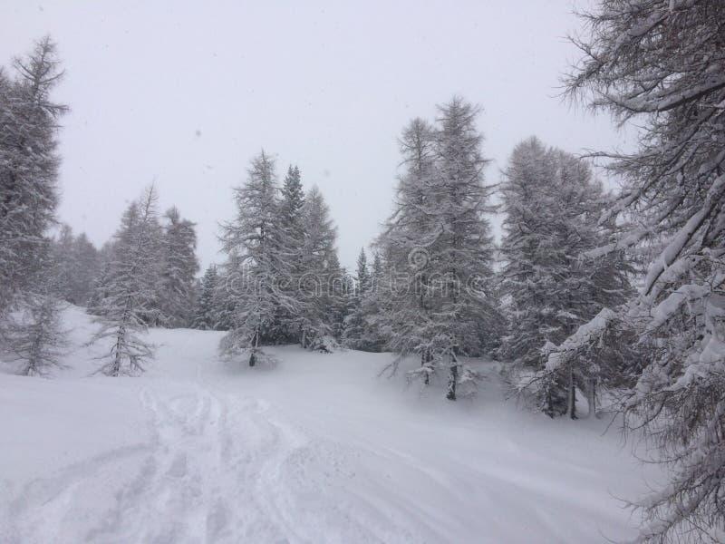 Zimy kraina cudów fotografia stock