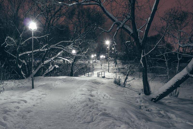 Zimy natury krajobraz w wieczór z rozjarzonymi lampionami i drogą opuszcza w odległość zakrywającą z snowr obrazy stock