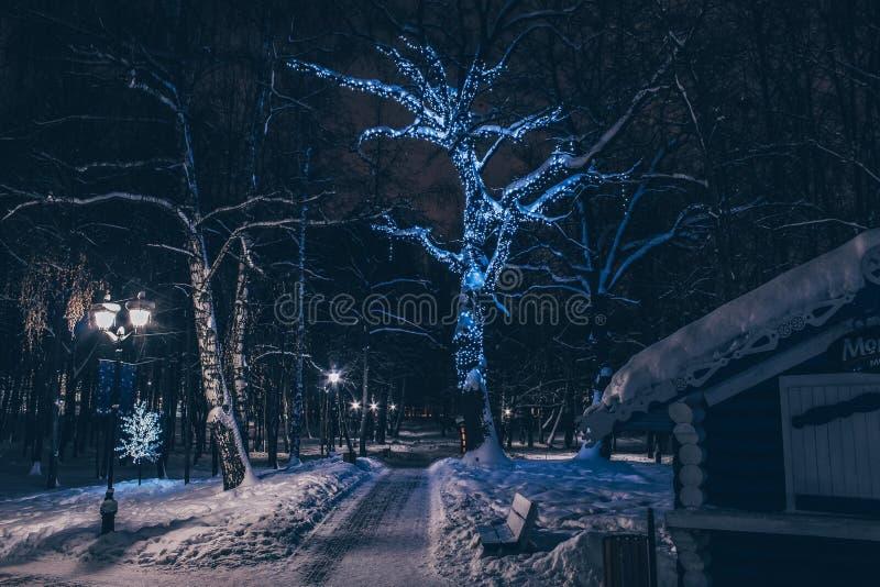 Zimy natury krajobraz w wieczór z rozjarzonymi lampionami i drogą opuszcza w odległość zakrywającą z snowr obraz royalty free