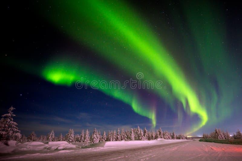 Zimy nocy krajobraz z lasu, drogowego i biegunowego światłem nad drzewami, fotografia stock
