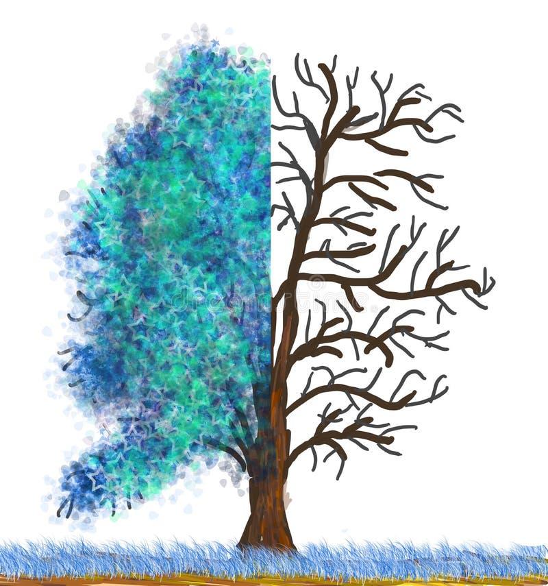zimy obfitolistny drzewo ilustracja wektor