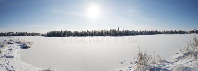 zimy panorama lasowy krajobraz w północy R obrazy stock