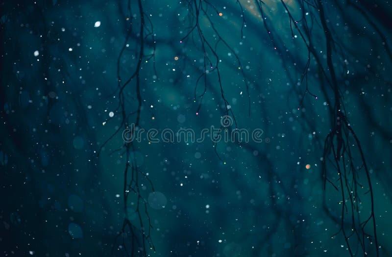Zimy Pogodowa noc obraz stock