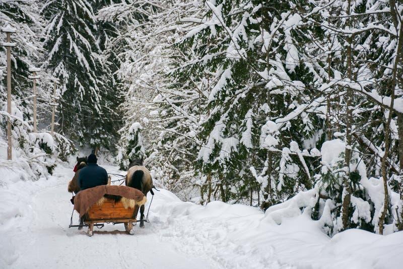 Zimy przejażdżka w końskim saniu obraz stock