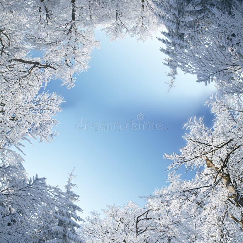 Zimy rama zdjęcia royalty free