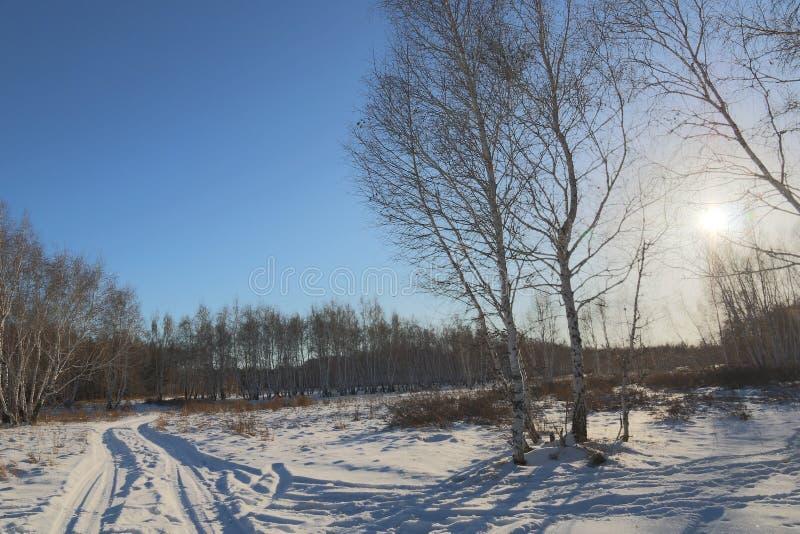 Zimy słońce i zdjęcie stock