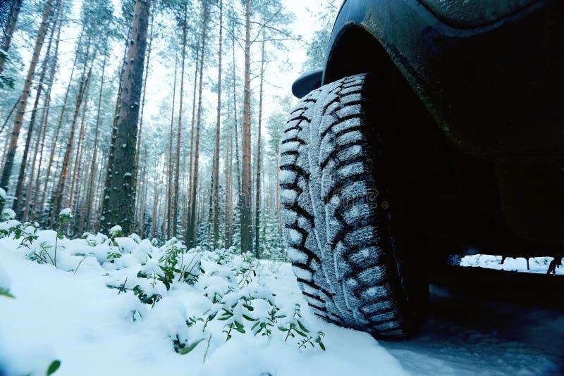Zimy samochodowy koło fotografia royalty free