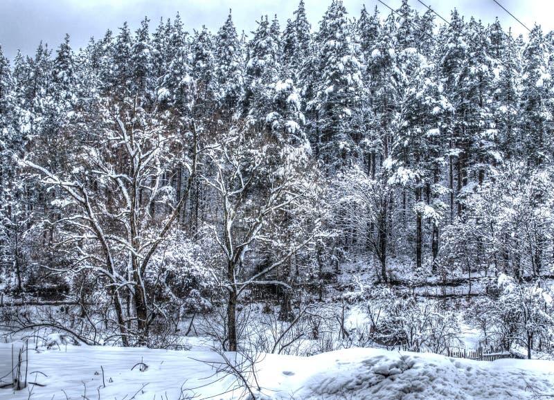 Zimy scena w górze Zimna pogoda zdjęcia royalty free