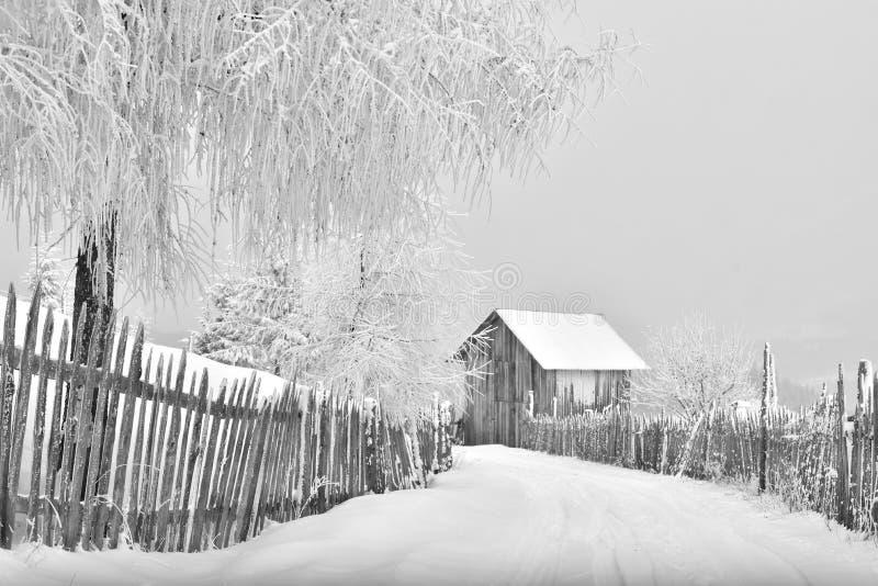 Zimy scena w Karpackim gór, dalekiego i srogiego środowisku, fotografia royalty free