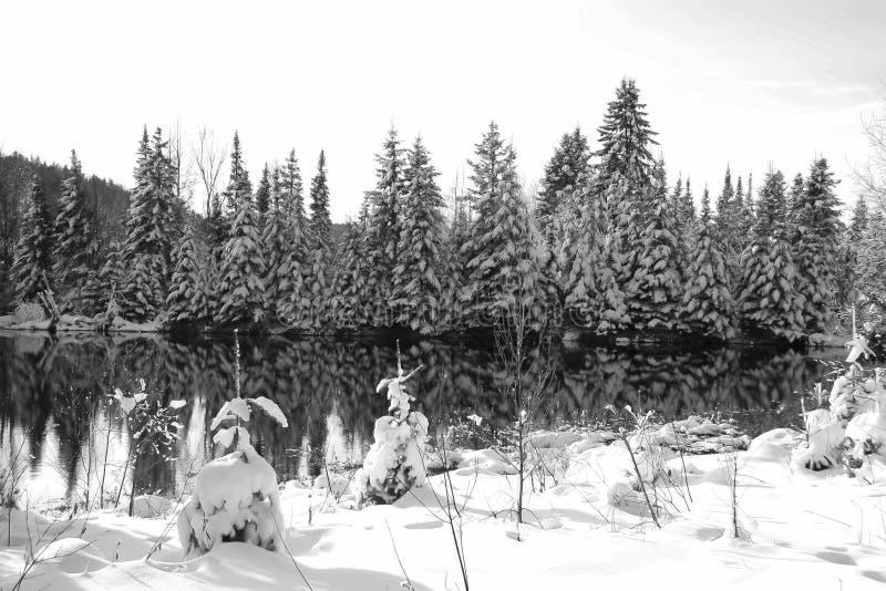 Zimy scena za granicą jezioro obraz stock
