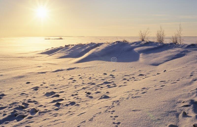 Zimy sceneria z słońcem w niebie obraz stock