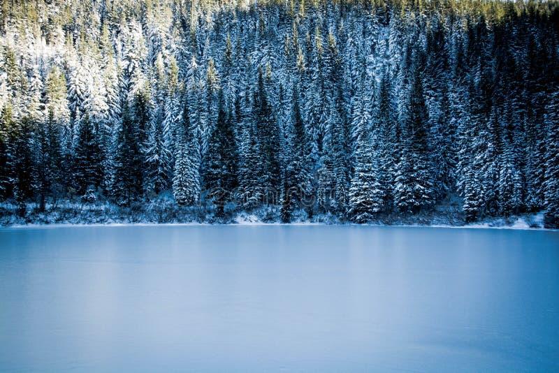 Zimy suknia zdjęcie royalty free