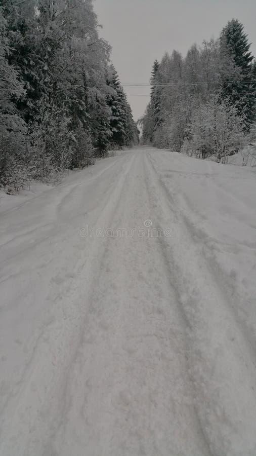 Zimy Szwecja śnieżnego piękna piękni szkodliwi skutki obraz royalty free
