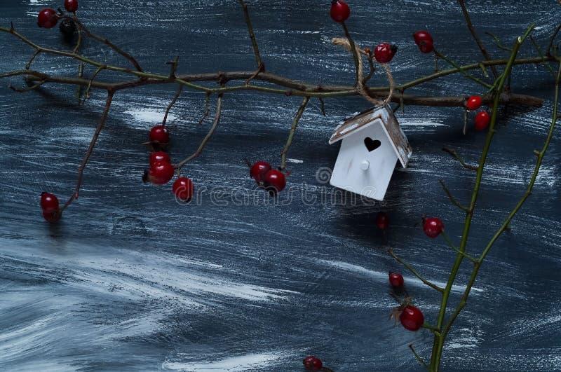 Zimy tło z małym birdhouse i dzikim wzrastał na błękitnym i białym tle, naturalne światło, odgórny widok obrazy stock