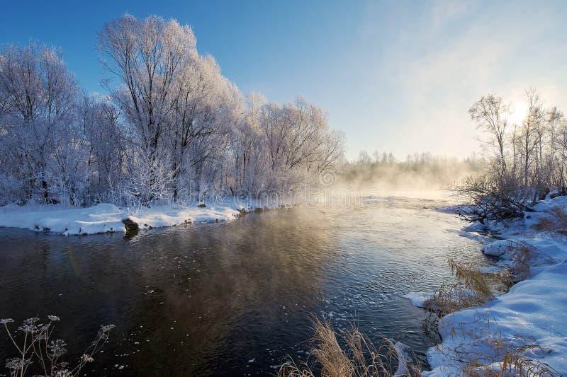 Zimy woda rzeczna zdjęcie royalty free