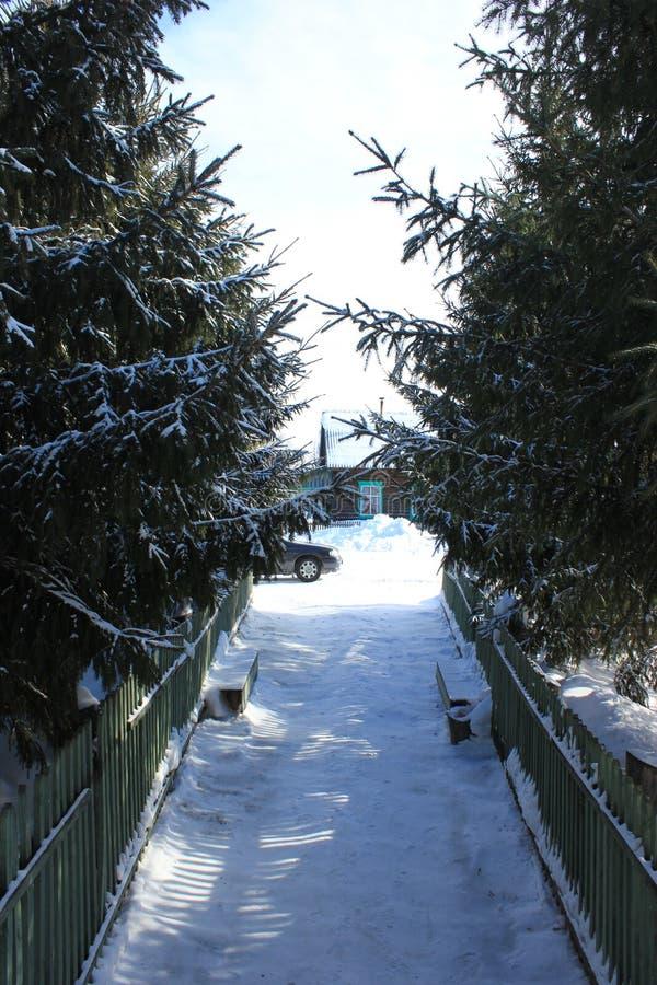 Zimy wsi krajobraz zdjęcia stock