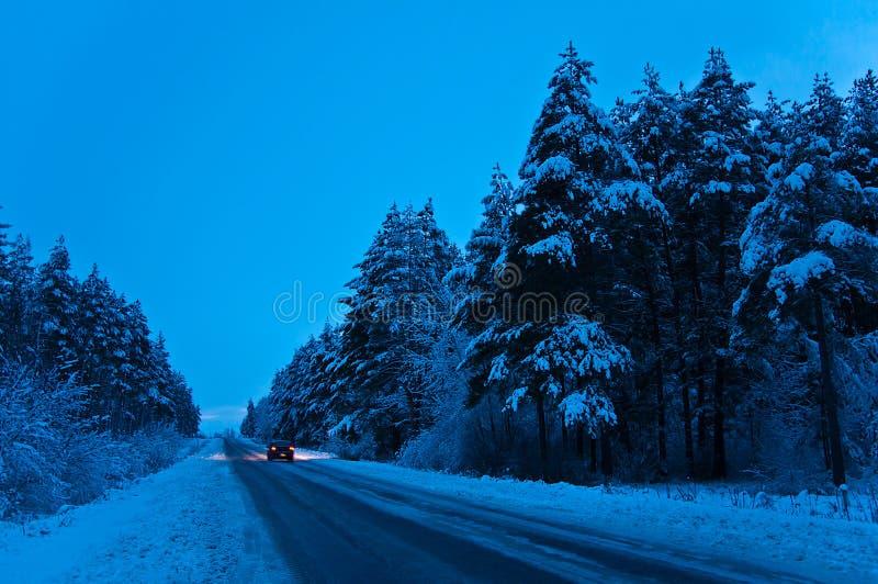 Zimy wycieczka fotografia royalty free