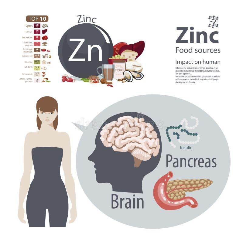 zinco O efeito dos minerais na saúde humana Uma dieta saudável e um estilo de vida saudável ilustração stock