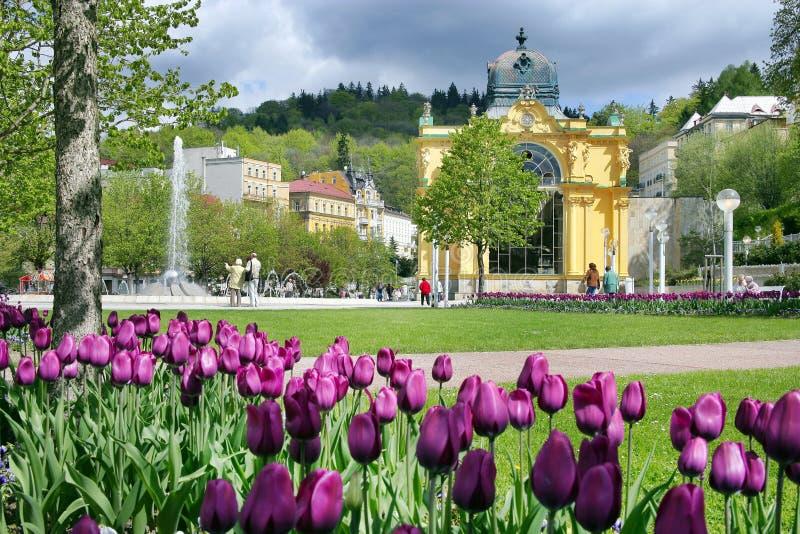 Zingende fontein, kuuroord Marianske lazne, Tsjechische republiek stock afbeelding