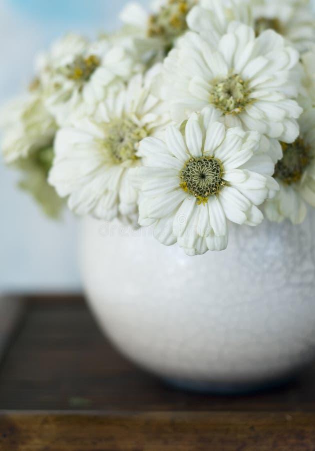 Download Zinnias in Raku Bowl stock photo. Image of simplicity - 3593918