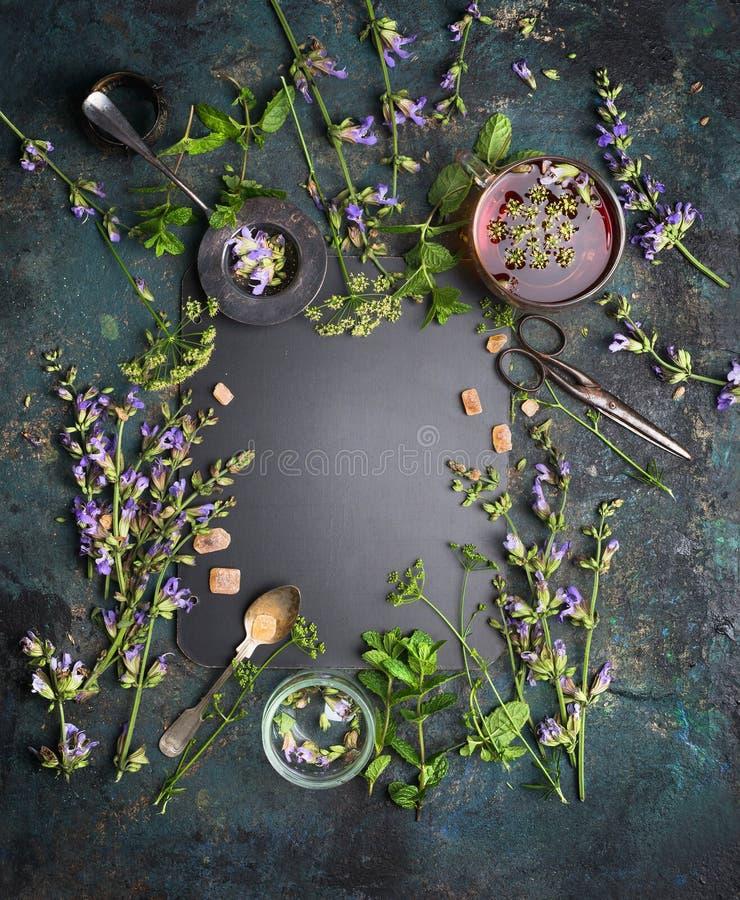 Ziołowa herbata na białym tle Różnorodni świezi ziele, herbat narzędzia i filiżanka herbata na ciemnym rocznika tle, rama, odgórn obrazy royalty free