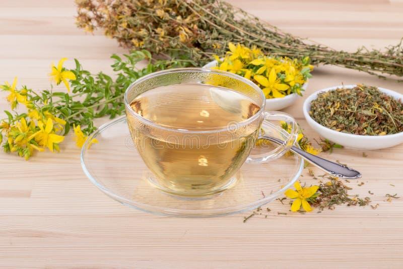 Ziołowa herbata St John ` s wort obrazy royalty free