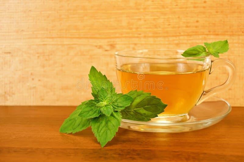 Ziołowa herbata w filiżance z mennicą na drewnianej desce obrazy royalty free
