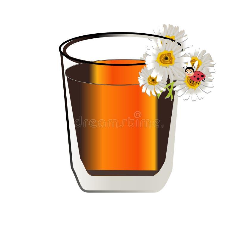 Ziołowa herbata z świeżymi chamomile kwiatami odizolowywającymi na białym tle royalty ilustracja