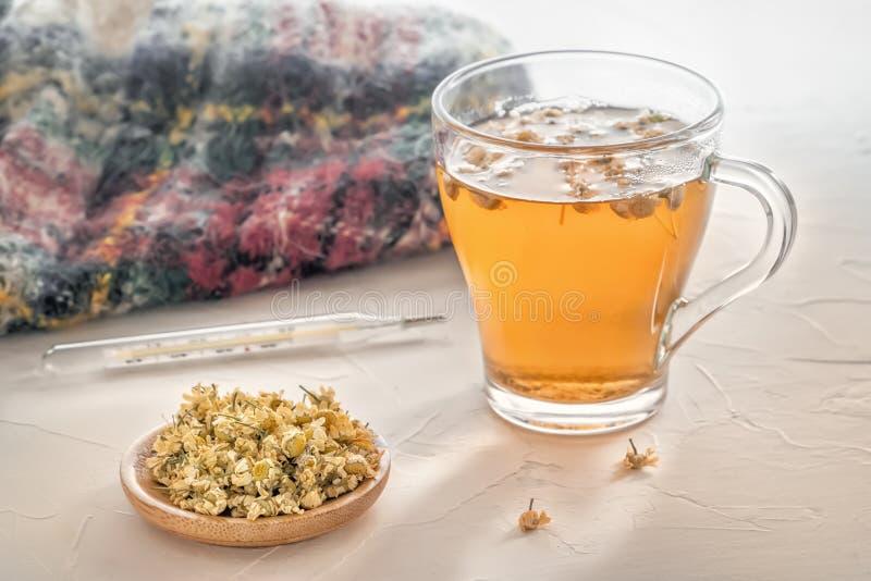Ziołowa herbata z farmaceutycznym chamomile, ciepłym szalikiem i medycznym termometrem na stole, fotografia stock