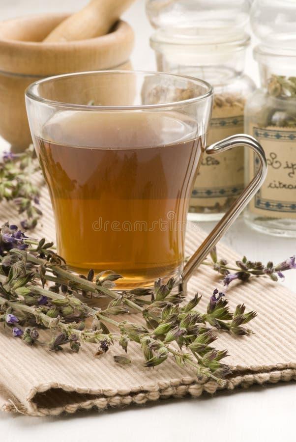 ziołowa lawendowa herbata zdjęcia royalty free