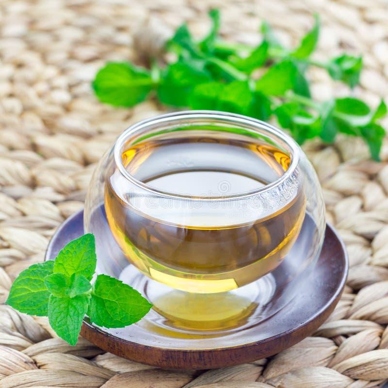 Ziołowa nowa herbata w orientalnej szklanej filiżance z świeżą miętówką na tle, kwadratowy format obraz stock